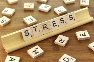 stress-scrabbleplank